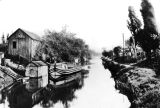 Canal boat between Thornton and Smith streets (OEC_141)